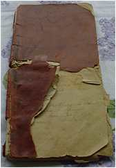 Francisco's diary